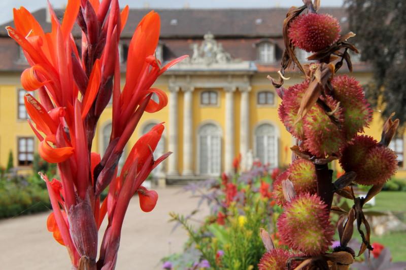 Schloss Mosigkau bei Dessau